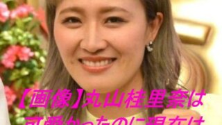 【画像】丸山桂里奈は可愛かったのに現在はヤバイ?