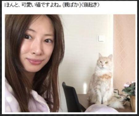 北川景子の整形疑惑を徹底検証!